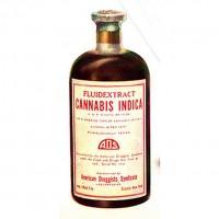Medical Cannabis – beyond debate.