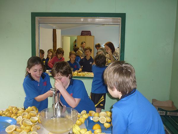 Rosebank Public School #309