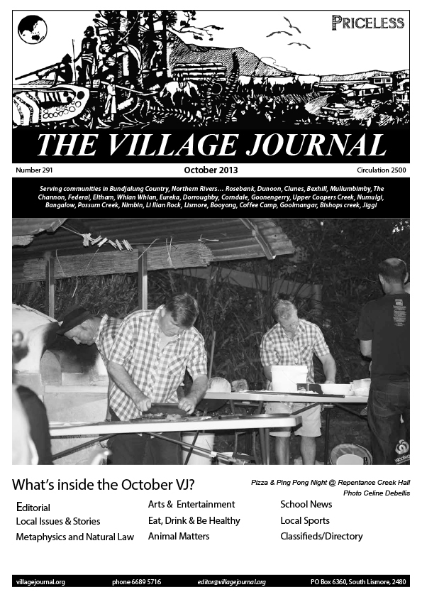 Village Journal 291