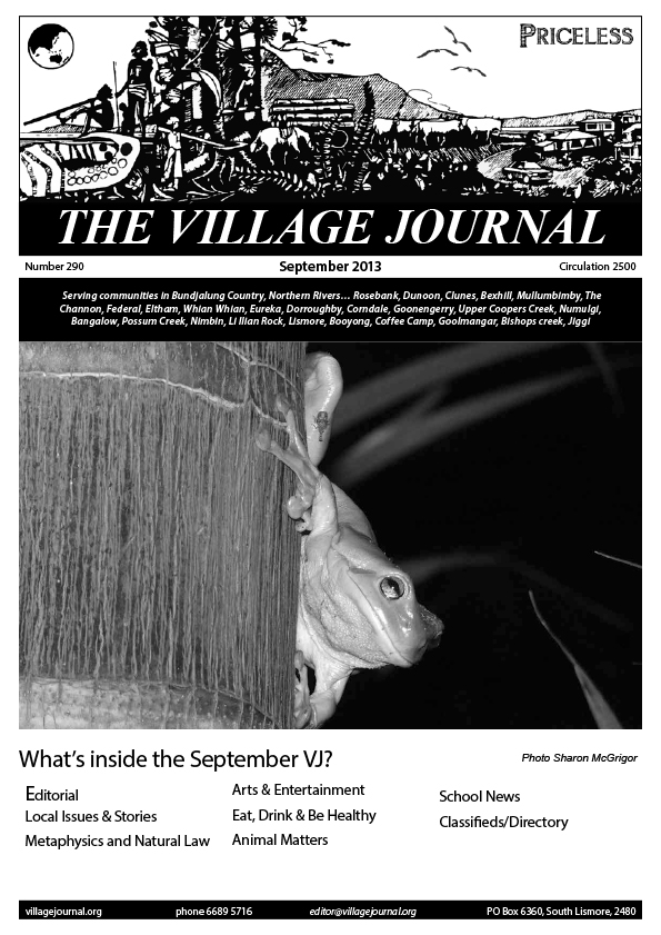 Village Journal 292