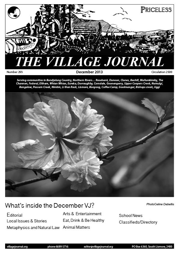 Village Journal 293