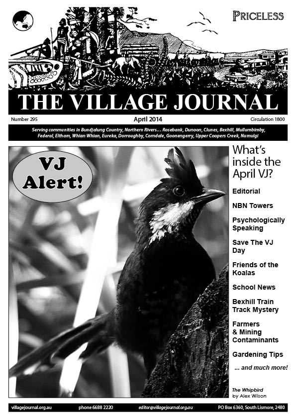 Village Journal 295