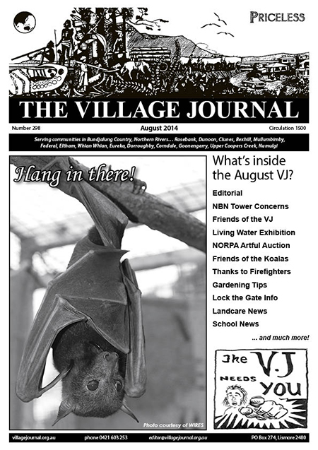 Village Journal 298