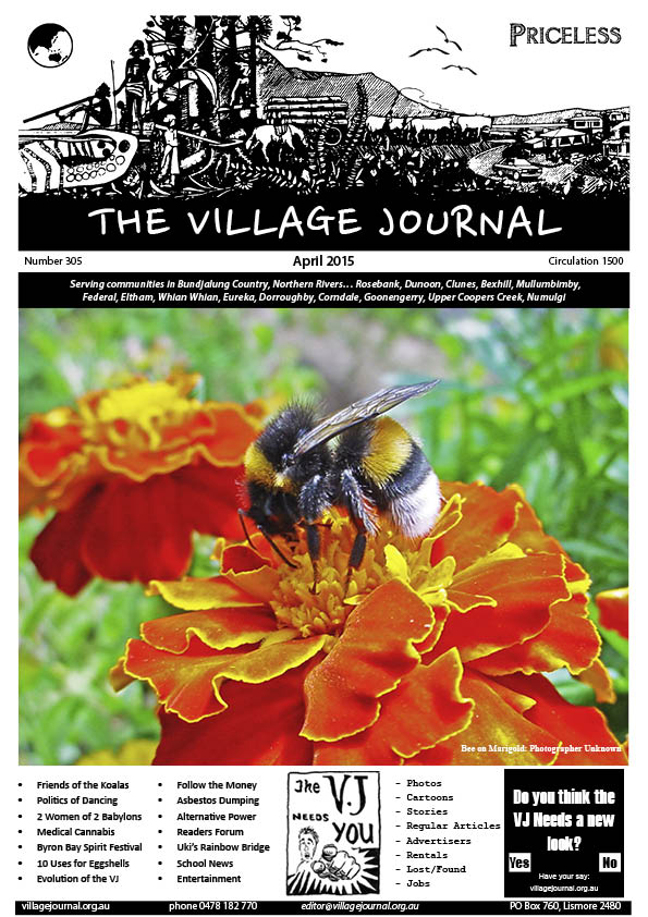 Village Journal 305