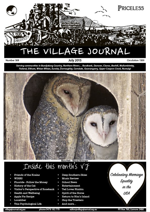 Village Journal 308