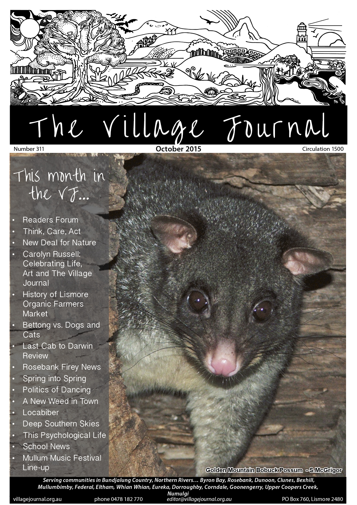 Village Journal 311