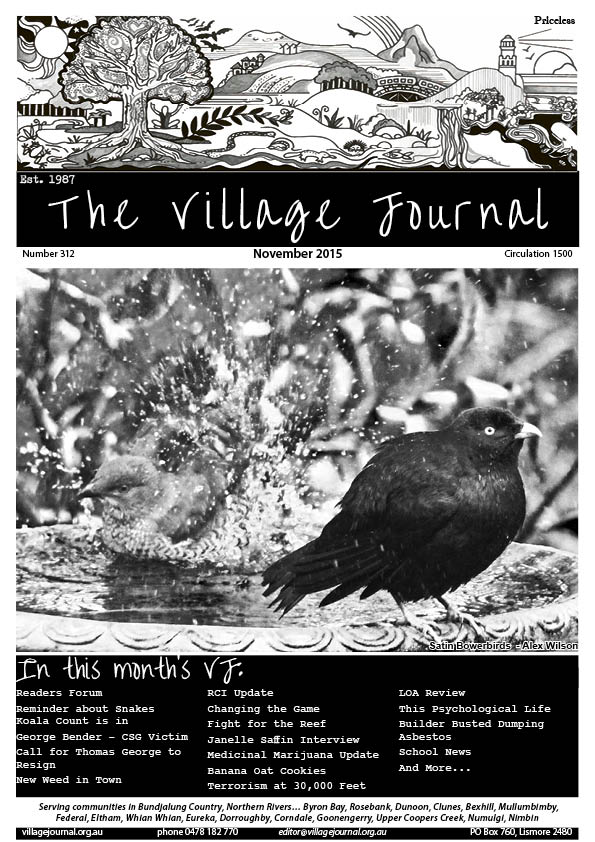 Village Journal 312