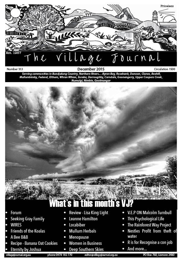 Village Journal 313